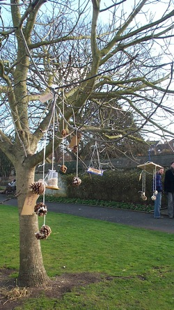 Recycled birdfeeders in the Grange, Lewes, on Seedy Saturday
